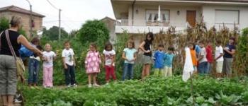 Recta final de las actividades infantiles del verano 2009, Organizadas por la Concejalía de Educación,Cultura y Juventud